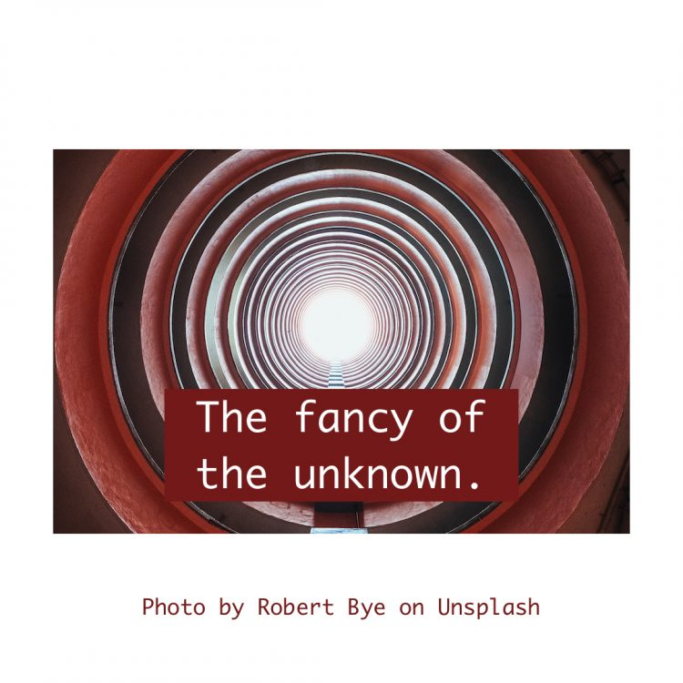 Snippet - The fancy of the unknown