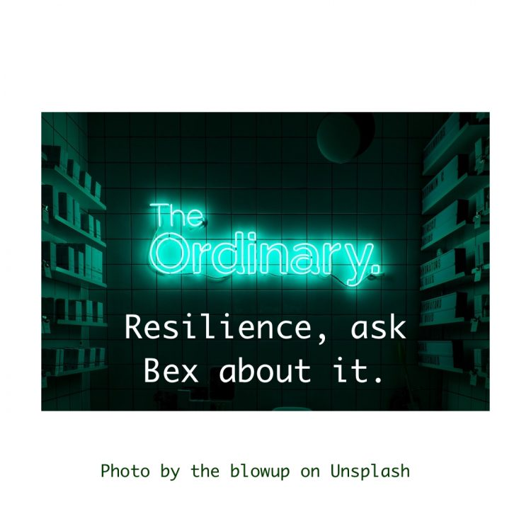 Snippet - Resilience, ask Bex about it